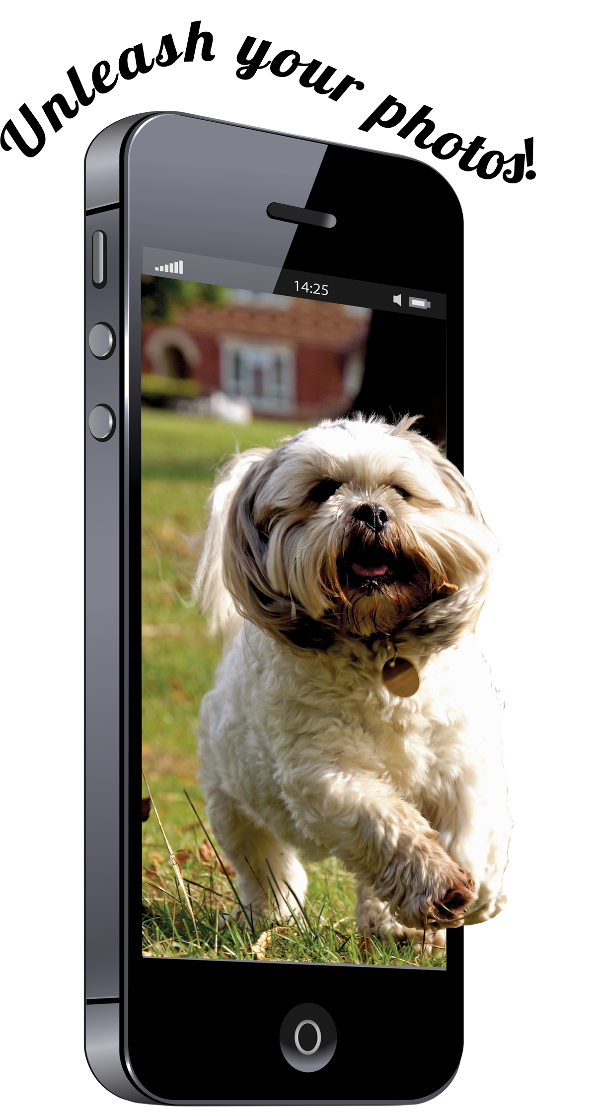 Cell phone with image of dog jumping out of screen. Unleash your photos!